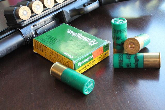 home defense ammunition